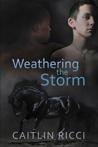 WeatheringtheStorm